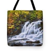 Kaaterskill Falls Tote Bag