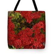 Kalanchoe Flowers Tote Bag