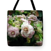 Kalanchoe Flowers Tote Bag