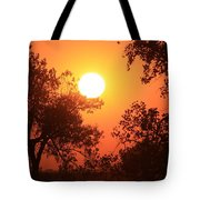Kansas Golden Sunset With Trees Tote Bag