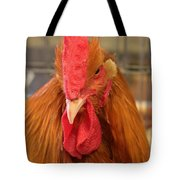 Kansas Red Orange Rooster Close Up Tote Bag by Robert D  Brozek