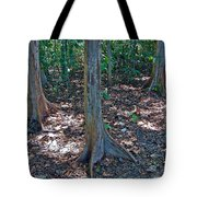 Kapok Trees Along The Trail In Manual Antonio National Preserve-costa Rica Tote Bag