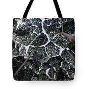 Kapur Trees Showing Crown Shyness Tote Bag