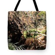 Kathleen Springs Tote Bag