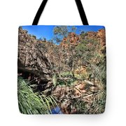 Kathleen Springs V3 Tote Bag