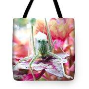 Katydid Face Tote Bag
