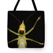 Katydid Underside Ecuador Tote Bag