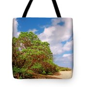 Kauai Beach Tote Bag