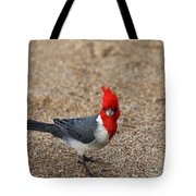 Kauaii Friend Tote Bag