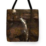 Kauterskill Falls Tote Bag