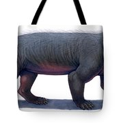 Kayentatherium, A Mammal-like Tote Bag