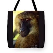 Kc Babboon 2 Tote Bag