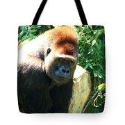 Kc Gorilla-3 Tote Bag