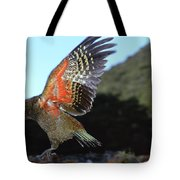 Kea Showing Brilliant Coloration  New Tote Bag