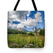 Kebler Pass Meadow Tote Bag