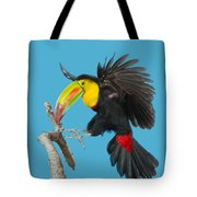 Keel-billed Toucan About To Land Tote Bag