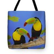 Keel-billed Toucan Pair Tote Bag