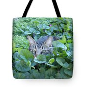 Keeping An Eye On You Tote Bag