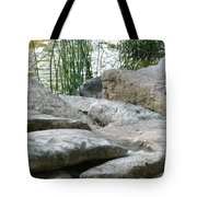 Keeping Their Distance Tote Bag