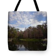 Kelly Park Springs Tote Bag