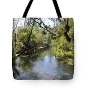 Kelly Springs  Tote Bag
