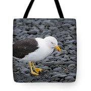 Kelp Gull Tote Bag