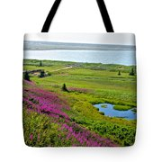 Kenai River Outlet On The Cook Inlet In Kenai-ak Tote Bag