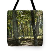 Kennesaw Battlefield Mountain Tote Bag