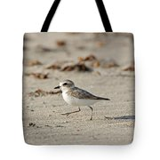 Kentish Plover Tote Bag
