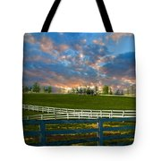 Kentucky Famous Horse Hotel Tote Bag