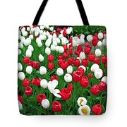 Keukenhof Gardens Panoramic 20 Tote Bag