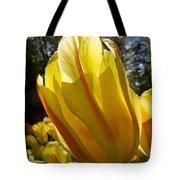 Keukenhof Yellow Tulips Tote Bag
