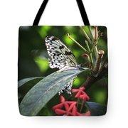 Key West Butterfly Conservatory - Idea Leuconoe Tote Bag