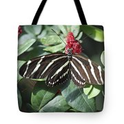 Key West Butterfly Conservatory - Zebra Heliconian Tote Bag