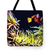 Key West Fish Tote Bag