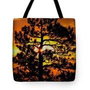 Keystone Pine Tote Bag