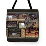 Horses Kickin It  Tote Bag
