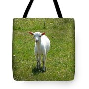 Kid Goat Tote Bag