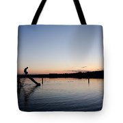 Kids On The Slide Tote Bag