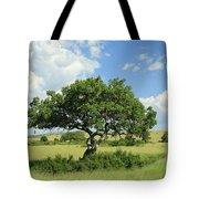 Kigelia Pinnata Tree Tote Bag