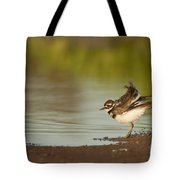 Killdeer Fluffing Up On The Shore  Tote Bag