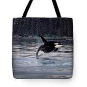 Killer Whale Orcinus Orca Breaching Tote Bag