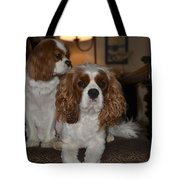 King Charles Dogs Tote Bag