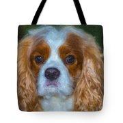 King Charles Spaniel Tote Bag
