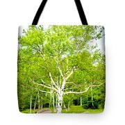 King Of The Birch Tote Bag