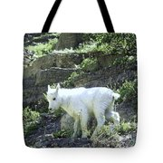 King Of The Mountain Tote Bag