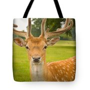 King Of The Spotted Deers Tote Bag