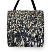 King Penguin Colony Tote Bag