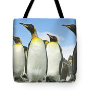 King Penguins Looking Tote Bag