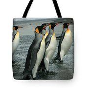 King Penguins Coming Ashore Tote Bag